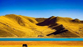 Travel to Tibet in October