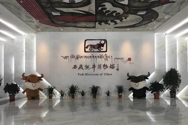 The Hall of Yak Museum