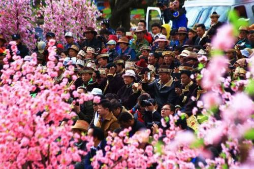 Nyingchi Peach Blossom Festival in March