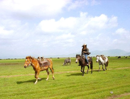 1 Day Dechen Valley Horse Riding Tour